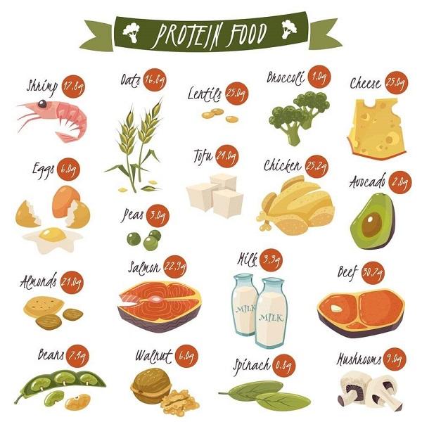 8 Pilihan Makanan Kaya Protein Dan Rendah Karbohidrat Tara Nature